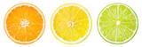 Citrus fruit. Orange, lemon, lime, grapefruit. Slices isolated o