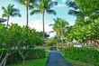 Hawaii- Big Island (kona)