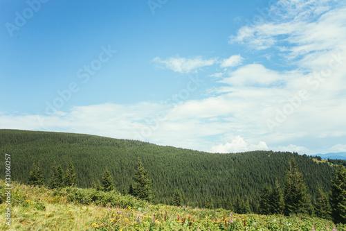 Foto op Aluminium Blauw ukrainian carpathian mountains. Beautiful mountain landscape.