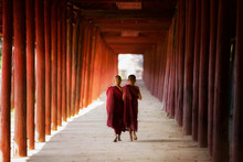 Young Buddhist Monk Walking And Reading