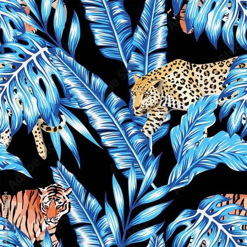 niebieski-bananowiec-tygrys-i-lampart-egzotyka