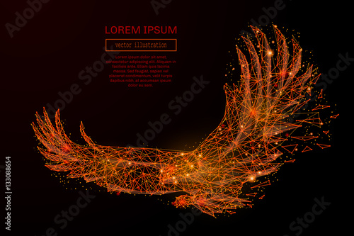 Fotografie, Obraz  Abstract mash line and point eagle in flames style on dark background with an inscription