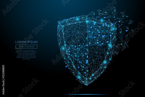 Fotografie, Obraz  Security Shield composed of polygons