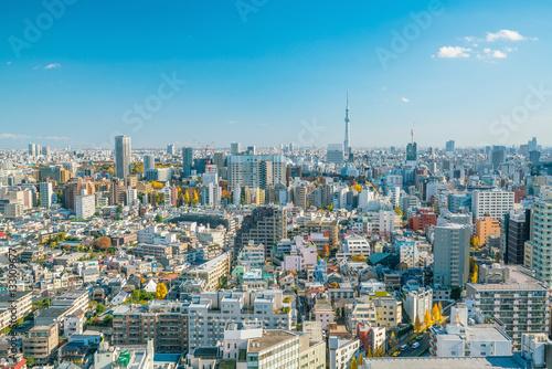 Foto auf AluDibond Tokio Downtown Tokyo skyline
