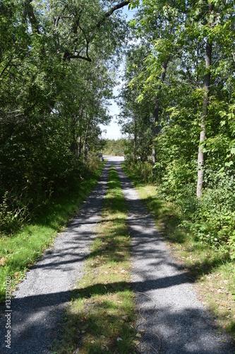 Foto op Plexiglas Groene Country driveway