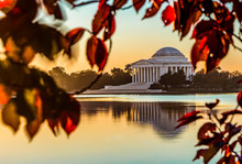 The Jefferson In Autumn