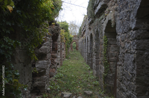 Poster Ruine Castle ruins corridor overgrown covered in moss crass and ivy Ruthin Castle North wales UK