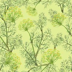 Fototapeta Przyprawy Seamless pattern of watercolor fennel plant