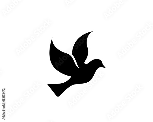 bird wing dove logo template vector illustration buy this stock