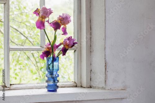 Flower in blue  vase on windowsill