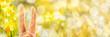 Leinwanddruck Bild - Easter Background, Bunny Ears