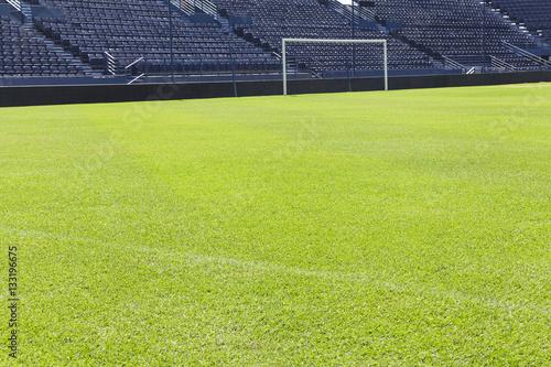 Fotografie, Obraz  Green grass on the football field