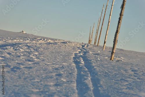 Fotografie, Obraz  Zimowa trasa