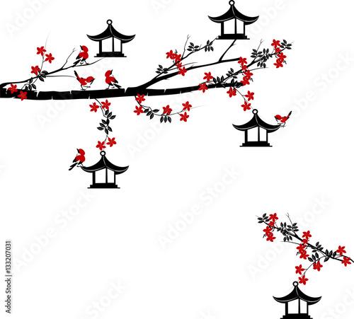 galaz-drzewa-z-ptakami