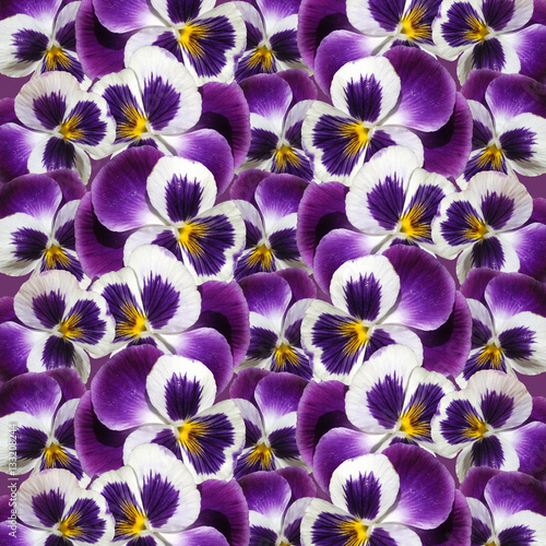 Papiers peints Pansies Beautiful floral background of purple pansies