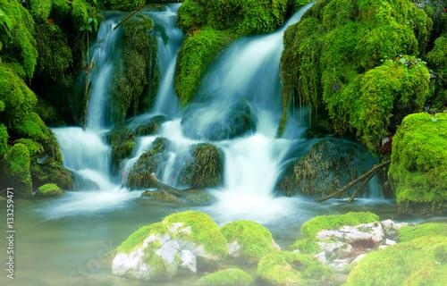 Fototapety, obrazy: Mountain stream among the mossy stones
