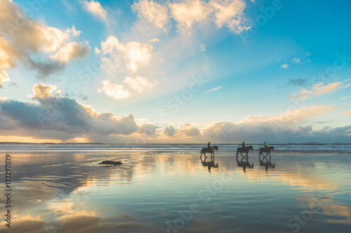 Acrylic Prints Horseback riding Horses walking on the beach at sunset