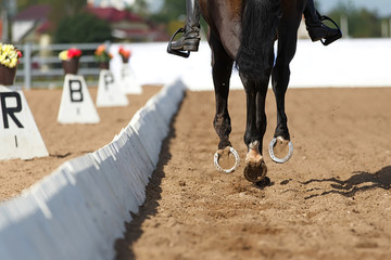 Close up of the horse shoe in motion. Dressage competition.