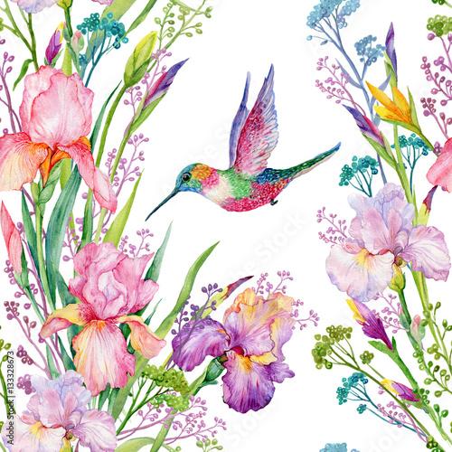 iris flowers and hummingbirds .watercolor seamless pattern - 133328673