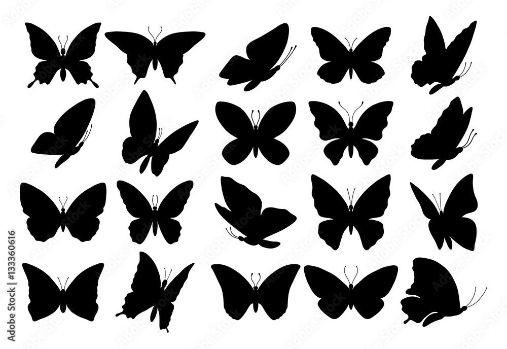 Fotografie, Obraz Set of butterfly silhouettes