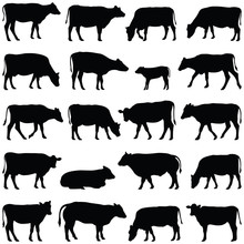 Cow Collection - Vector Silhou...