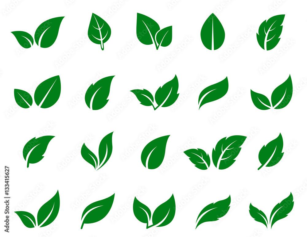 Fototapeta green leaf icons set