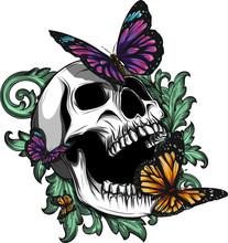 Teschio Con Farfalle