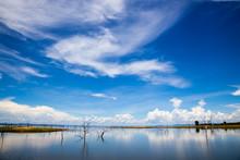 Lake Kariba.  Dead Trees And Reflection Of The Sky.  Zambezi River.  Zimbabwe, Africa.