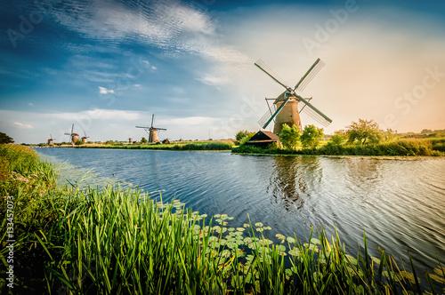 Historians Dutch windmills near Rotterdam Wallpaper Mural