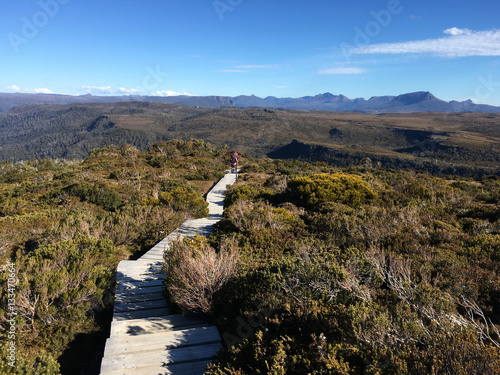 Cradle Mountain Overland Track Canvas-taulu