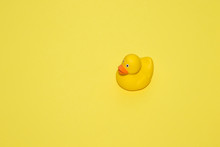 One Yellow Rubber Duck On Yell...