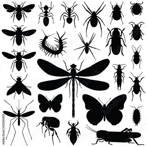 Insect icon collection - vector silhouette Tapéta, Fotótapéta