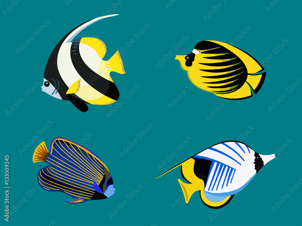 Ocean exotic fish set. Underwater red sea collection