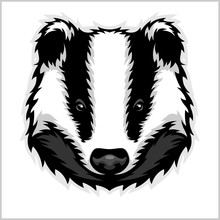Badger Head Black And White