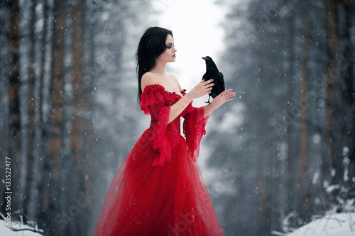 Fotografie, Obraz  Woman witch in red dress and with raven in her hands in snowy fo