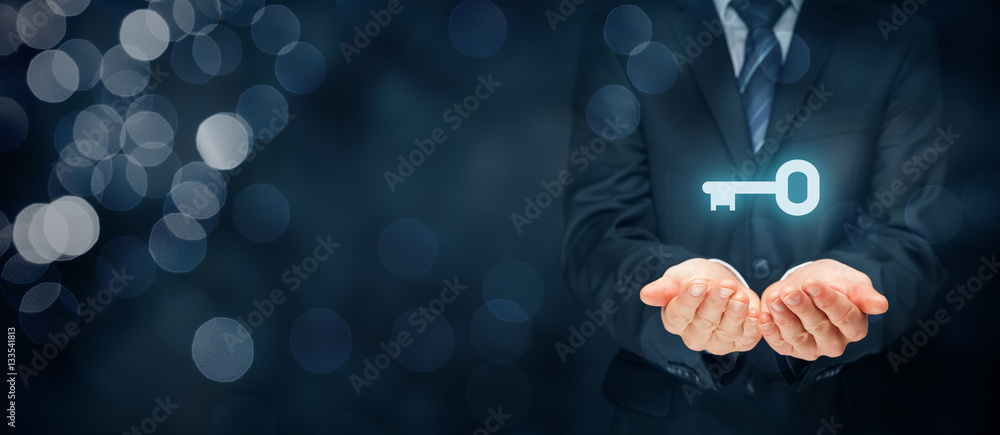 Fototapeta Key to success or solution