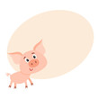 Funny little smiling pig with swirling tail, cartoon vector illustration on background with place for text. Cute little pig standing on four legs and smiling shyly, decoration element