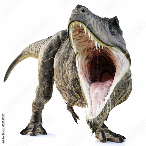 Photo  A Tyrannosaurus Rex attack on an isolated white background