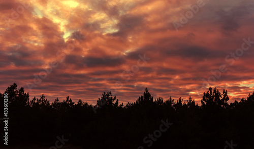 Poster Bordeaux Fiery orange colorful sunset sky.