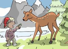 Jongen Voert Een Hert Een Stukje Gras