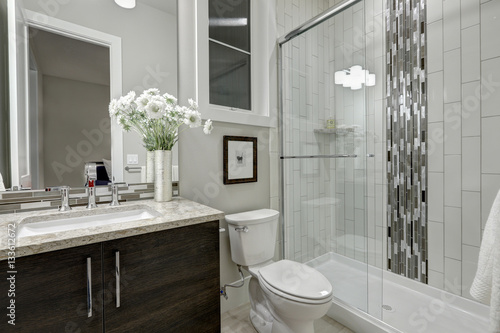 Fotografie, Obraz  Glass walk-in shower in a bathroom of luxury home