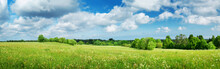 Green Field With White Dandelions And Blue Sky. Panoramic View To Grass And Flowers On The Hill On Sunny Spring Day