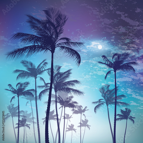 Silhouette of palm tree in moonlight. Vector illustration Wall mural
