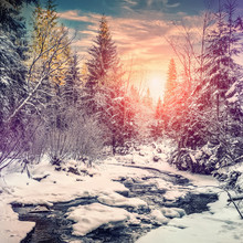 Wonderful Winter Landscape. Snow Covered Pine Tree Over The Mountain River Under Sunlight. Colorful Sky. Wonderful, Amazing View. Christmas Holiday Concept. Picturesque Amazing Scene. Instagram Filter