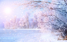 Beautiful Winter Landscape Sce...