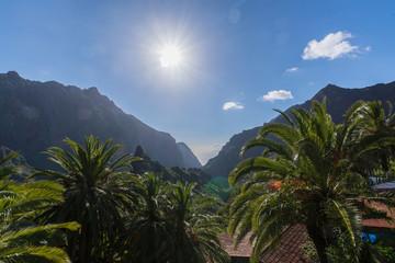 Fototapeta na wymiar Nature in Masca Village, Tenerife