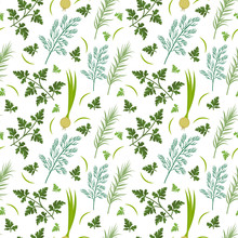 Herbs Seamless Pattern. Parsley, Dill, Razmarin Endless Background, Texture. Vegetable Backdrop Vector Illustration