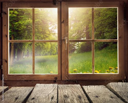 Drewniana chata z widokiem na polanę leśną wiosną / wczesnym latem w słońcu