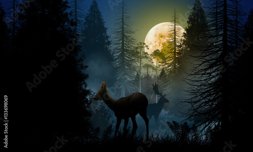 Valokuva Deer and stag in the woods at night
