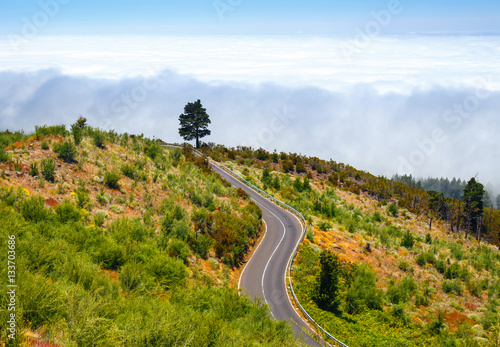 Poster Nieuw Zeeland mountain route above the clouds in Tenerife Island, Spain
